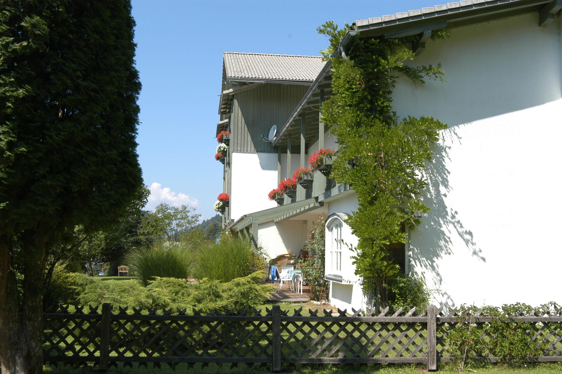 Fassade Grüner Baum
